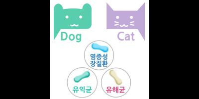 반려동물 장내세균분석[개,고양이전용]