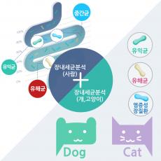장내세균분석 사람+반려동물(개,고양이)